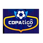 Division Profesional, Apertura
