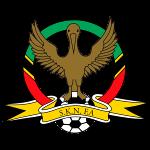 SKNFA Premier League