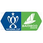 Vietnam Cup