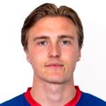 Christian Dahle Borchgrevink