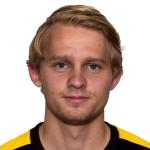 Martin Petterson Heiberg