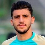 Mehdi Mehdikhani