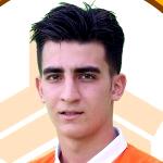 Mohammad Soltani Mehr