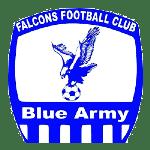 Falcons FC