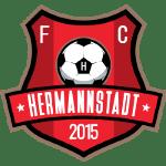 fc-hermannstadt