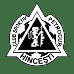FC Petrocub Hîncesti