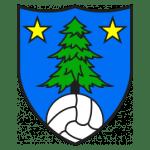 FC Saint-Leonard